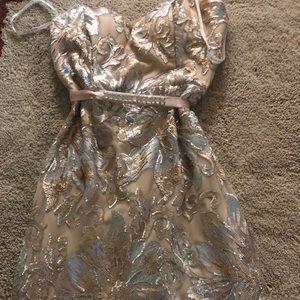 Bisou Bisou Party Dress
